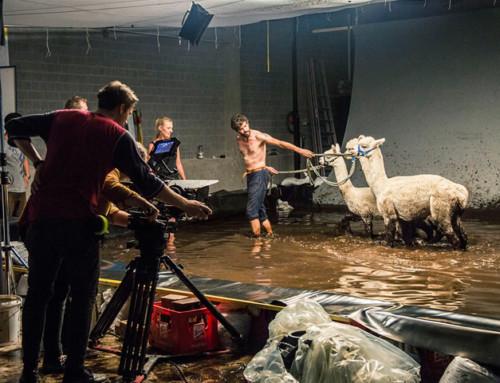 FH Salzburg Studierende gewinnen internationalen Wirtschaftsfilmpreis