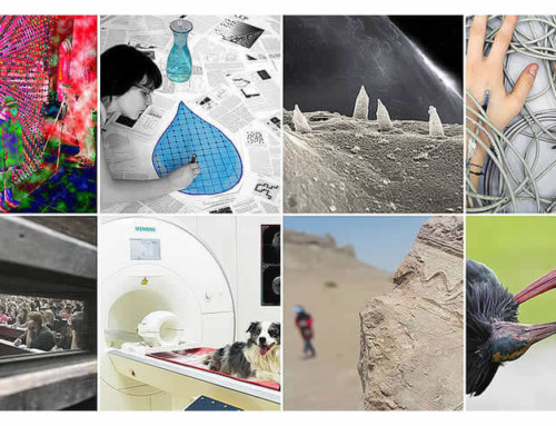 Arts & Science: Forschungsbilder 2019