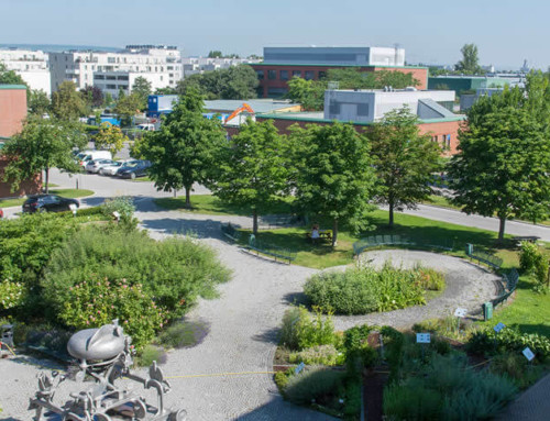Vetmeduni Vienna erreicht Platz 5 bei weltweitem Studienfach-Ranking